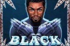 Oynamaq Slot maşın Black Rider